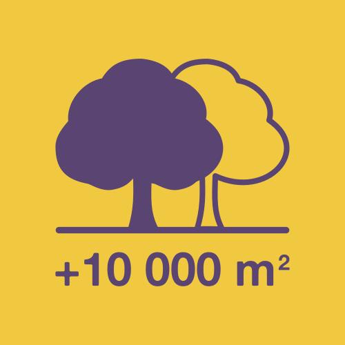 Soproni Tamás Az ellenzék közös polgármesterjelöltje Terézváros Momentum zöld fák sétálóutca park